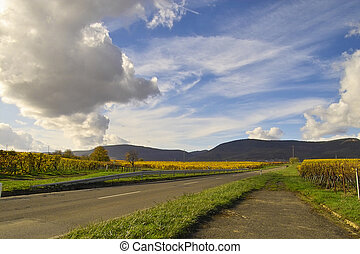 Sky over wineyards - road in the wineyards under bright blue...