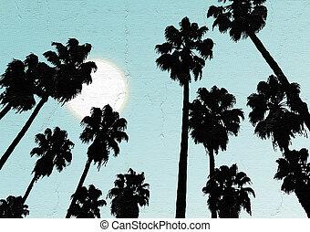 sky, palm