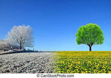 sky., paysage, printemps, hiver, bleu