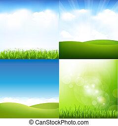 sky, sätta, gräs