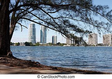 Sky scraper buildings near the ocean in Florida