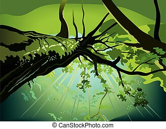Shining sky through the upper branches of trees, vector illustration