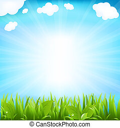 Sky With Beams And Sprout, Isolated On White Background,...