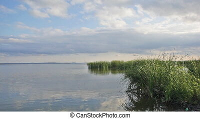 sky with clouds and a grass are reflected in lake water