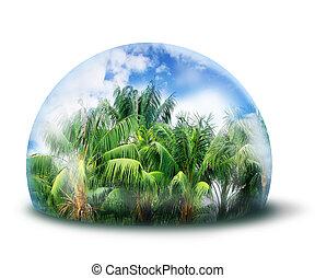 skydda, djungel, naturlig, miljö, begrepp