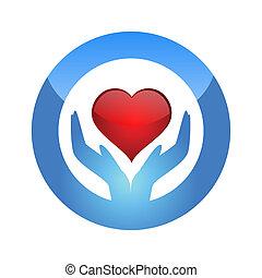 skydda, hjärta