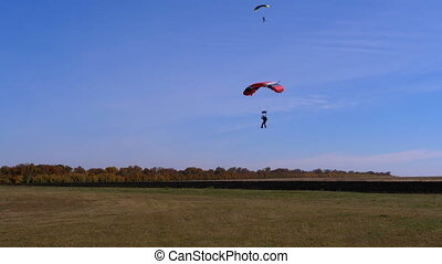 Skydiver flying with a parachute and landed on the ground....