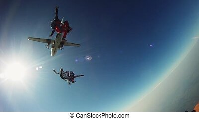 Skydivers falling in blue sky. Extreme. Height. Adrenaline. Sunny day. Airplane