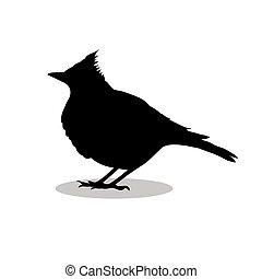 Skylark lark bird black silhouette animal. Vector...