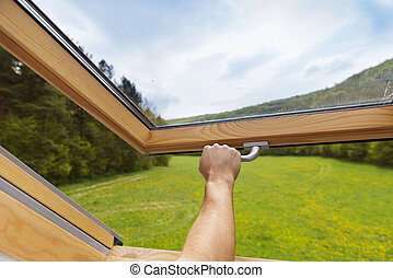 Skylight window - Beautiful nature view through roof ...