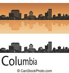 skyline, columbia