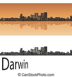 skyline, darwin