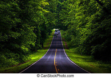 Skyline Drive in a heavily shaded forest area of Shenandoah...