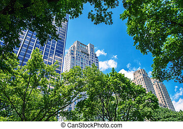 Skyline of New York from Central Park road
