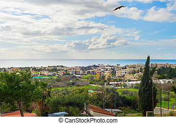 Skyline Paphos bird flying Cyprus