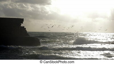 Skyline seascape with flying sea-gulls and ancient wall -...