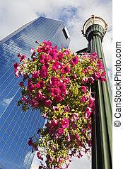 Skyscraper in Lexington - Skyscraper in Lexington, Kentucky,...
