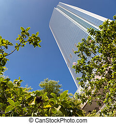 Skyscraper in the Financial district of Los Angeles