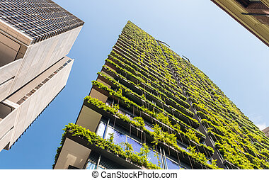 Skyscrapers with flowers and vegetation along terraces