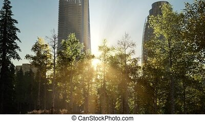 skyscrapes and the forest park at sunrise