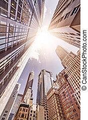 Skyskrapers in the sun