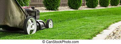 slåmaskine græsplæne