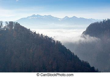 sløret, formiddag, ind, bjerge