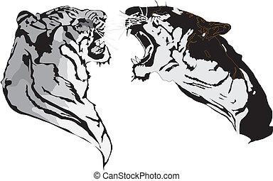 slag, tigre
