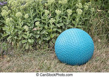 slam ball in a backyard - home gym concept