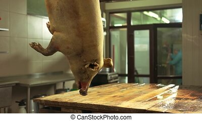 Slaughtered pig hanging on hook at butchery. Pork carcass in...