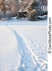 Sled track in snow at winter day