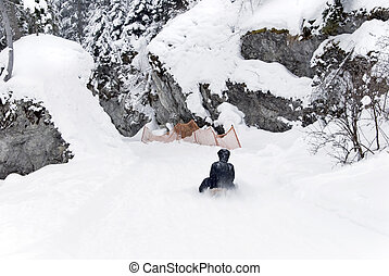 sled winter - woman on sledge in winter landscape