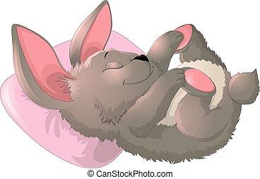 Sleep bunny on a white background - Sleep cute bunny on a...