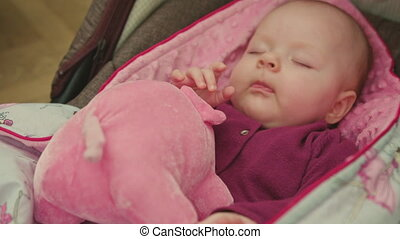 Sleeping Baby with Toy in a Car Seat