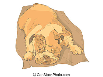 Sleeping bulldog
