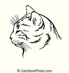 Sleeping cat contour head