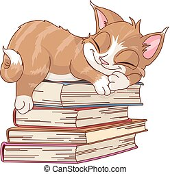 Cute cat are sleeping on pile of books