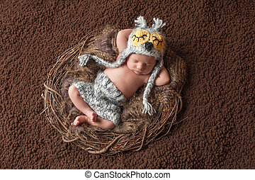 Sleeping Newborn Baby Boy Wearing an Owl Hat