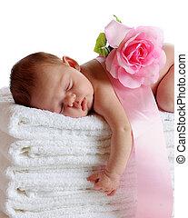 Sleeping Newborn - A beautiful newborn sleeping soundly on a...