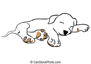 Hand drawing sleeping puppy on white background