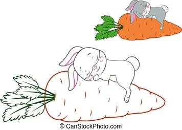 Sleeping Rabbit Coloring Page