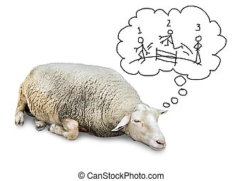 Sleeping sheep counting humans - Funny concept of cute sheep...