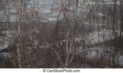 Sleeting in a city on background of leafless birch