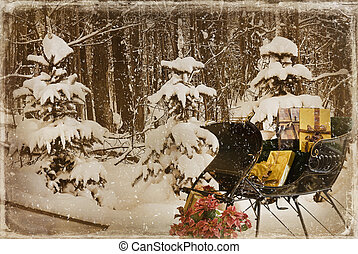 sleigh, inverno