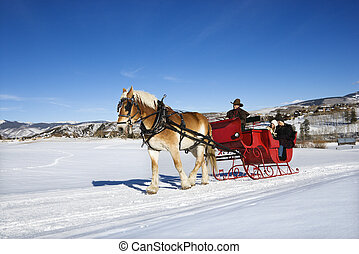 Sleigh ride. - Young Caucasian couple and mid adult man on...