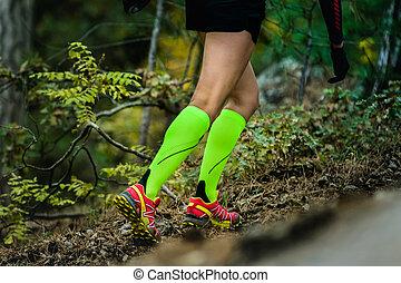 slender and beautiful legs girls - closeup slender and...