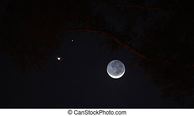 Slender crescent moon with Venus and Jupiter in the western sky at dusk.