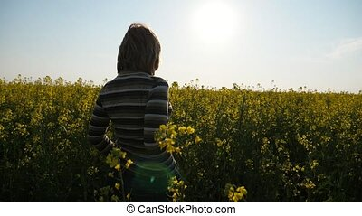 Slender woman standing in a flourishing rapeseed field in...