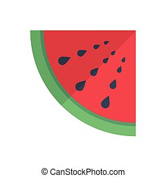 slice  flat color icon