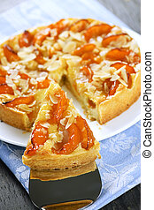 Slice of apricot and almond pie - Slice of fresh baked ...